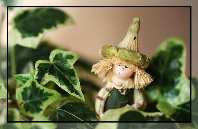 Fred le jardinier