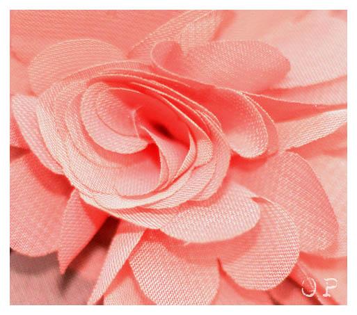 PP52_2012_43_rose